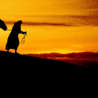 ГРАДЕЖ: Ходене в съвършената воля на Бог
