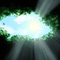 ГРАДЕЖ: Светлината